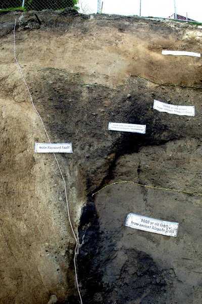 Photograph of the north facing wall of a trench across the southern Hayward Fault in Fremont.