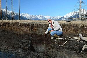 Alaska sediments