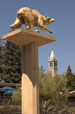 Stock photo of golden bear statue.