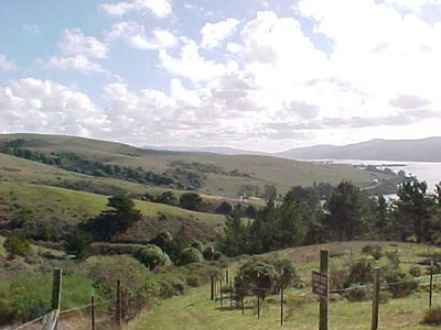 View of Tomales Bay from the Conference Center<br>Courtesy of the Marconi Conference Center