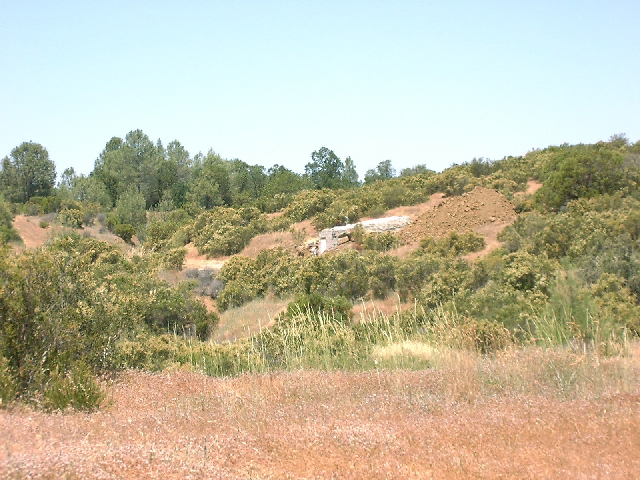 View of the MNRC vault at McLaughlin Reserve